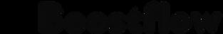 Boostflow Logo