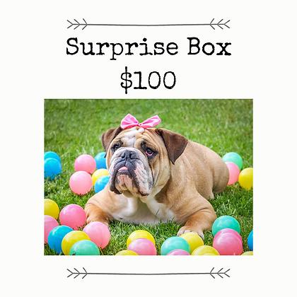 Surprise Box - $100