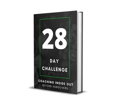 book mock up 28 days.png