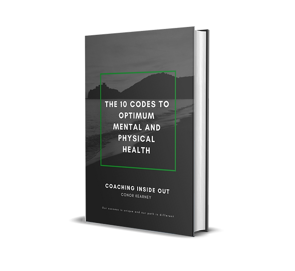 book cover 10 codes.png