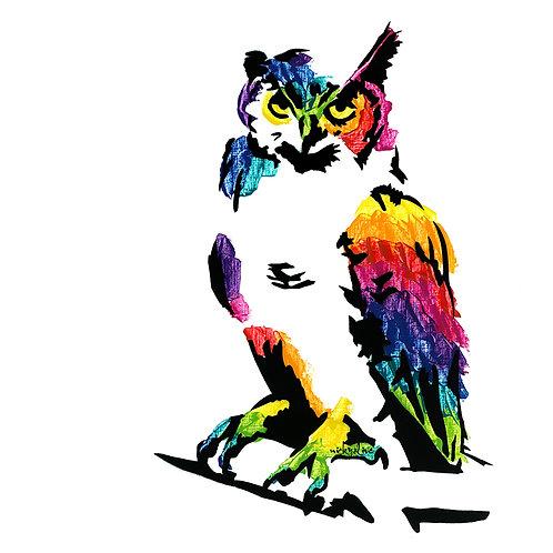 Rosa the Owl