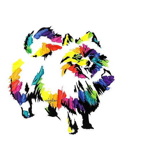 Niles the Pomeranian