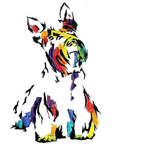 McDuff the Scottish Terrier