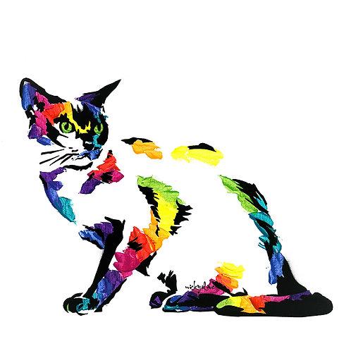 Sofia the Burmese Cat