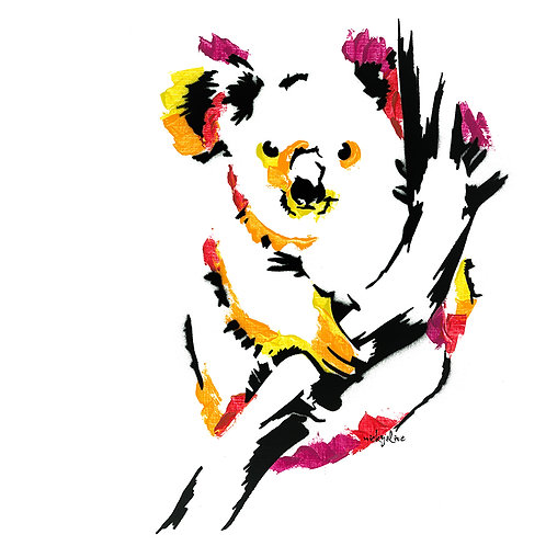 William the Koala