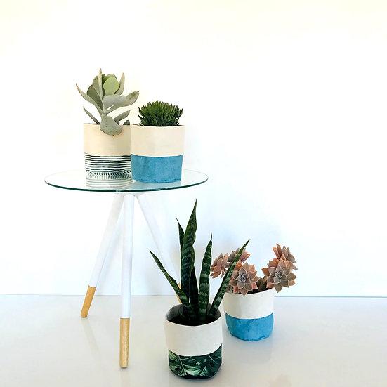 PLANTA REFERENCIAL
