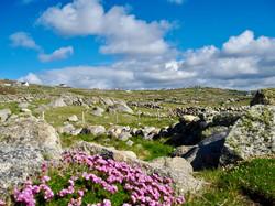 Donegal Wild Atlantic Way
