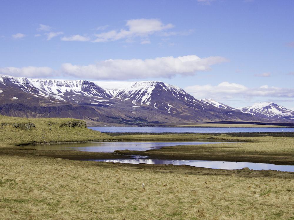 Videy Island Reykjavik, visit Icelan