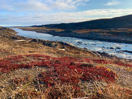 ᓄᓇᕗᑦ ᐅᓪᓗᖓ Happy Nunavut Day