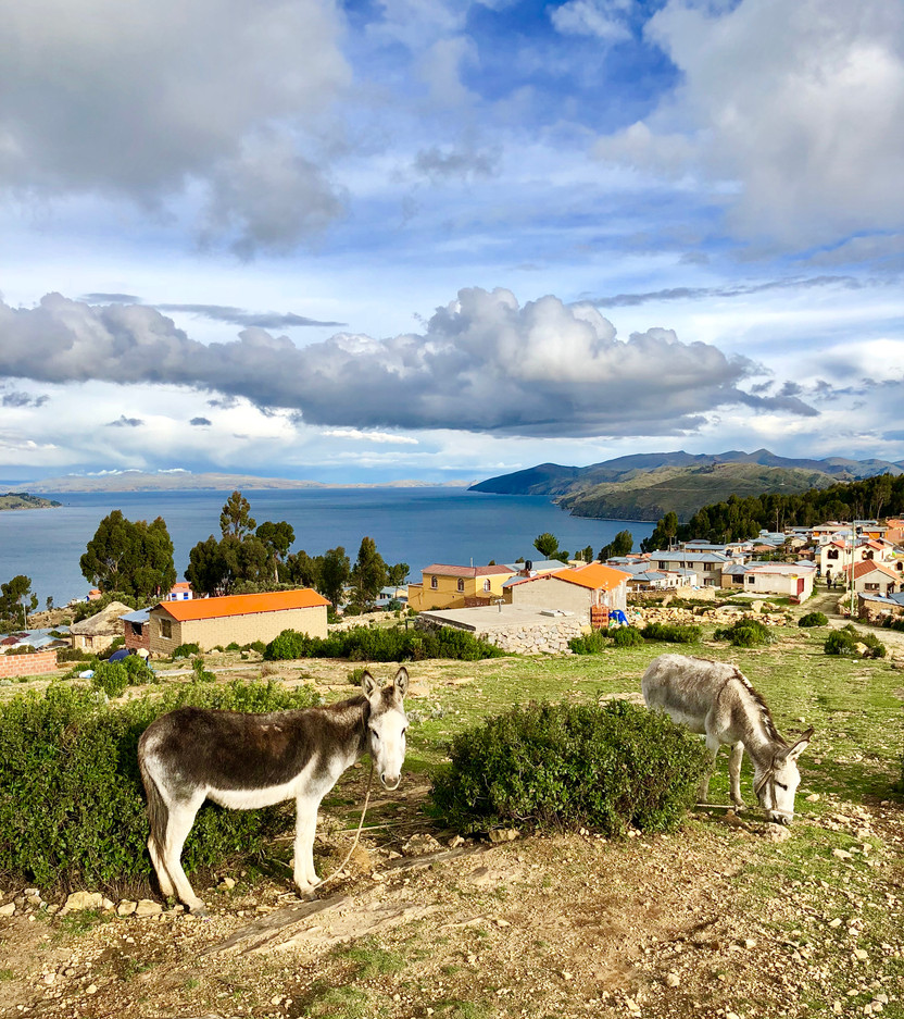 Copacabana and Isla del Sol, Lake Titicaca, Bolivia