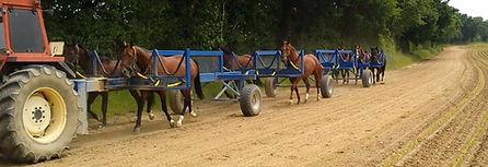 herse, herses, herse chevaux, herse piste trot, herse piste galop, marcheur, herse cheval, herse pistes galop, herses pistes trop, training, matériel cheval, abris chevaux, abris cheval, andré blin