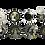 Thumbnail: Vaisselier Faux-Semblants