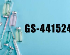 GS- 441524 는 다른 브랜드 와 의 차이점은 무엇입니까 ?