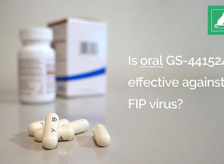 Dois-je choisir les formes orales de GS-441524?