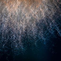 Fireworks-015.JPG