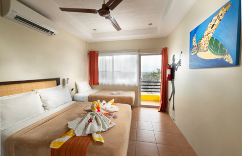 Sea View Superior Room (1 double bed, 1