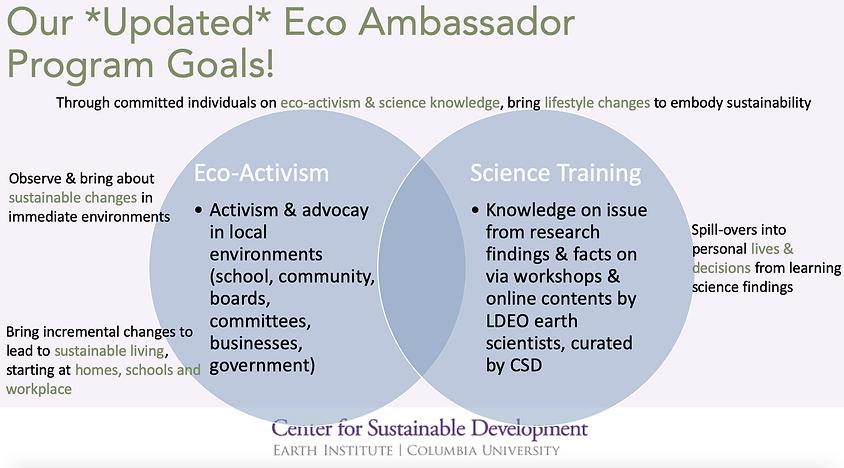 EcoAmb Framework.png