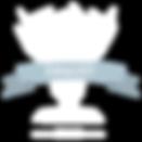 finalist badge.png