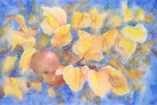 """""""Aroma of the autumn"""""""
