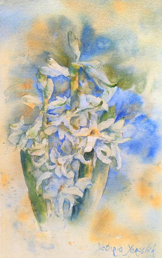 """""""Aroma of the spring. Hyacinth"""""""""""