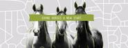 HRA: Horse Rescue Australia