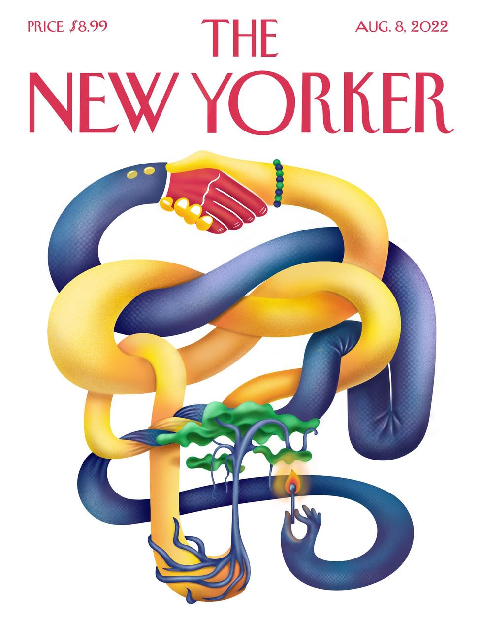 NewYorker - Political