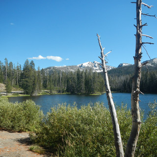 Sylvan Lake Yellowstone National Park.JP