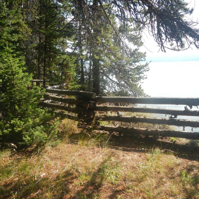Yellowstone Picnic Area.JPG