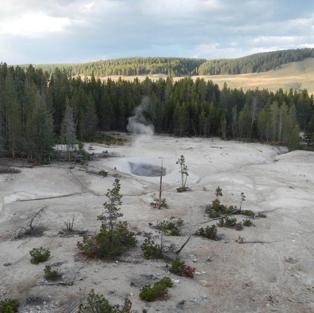 Sulphur Caldron Yellowstone.JPG