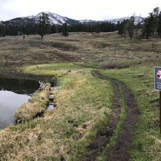 Trout Lake Restricted Fishing Area.JPG