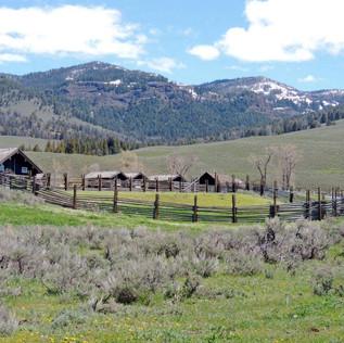 Yellowstone Forever Buffalo Ranch.JPG