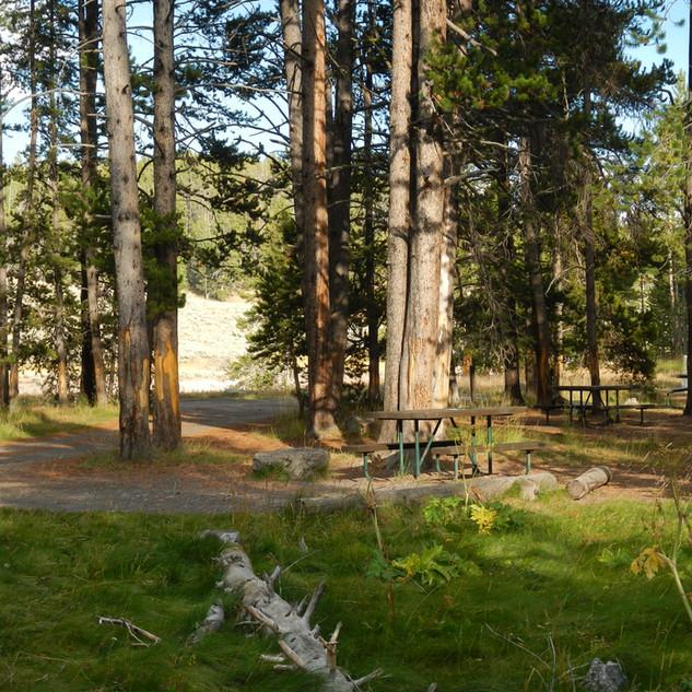 Cascade Picnic Area.JPG