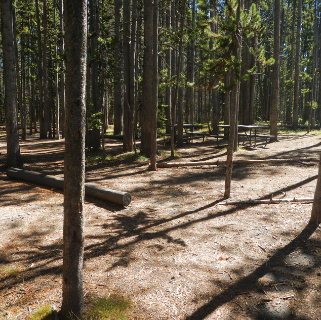 East Divide Picnic Area Yellowstone.JPG