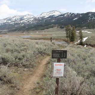 Lamar River Trailhead Sign.JPG