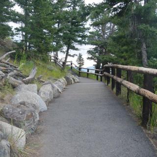 Calcicte Springs Pathway.JPG