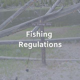 Fishing Regulations.jpg