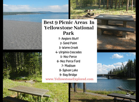 Best 9 Picnic Areas in Yellowstone – For the Whole Family