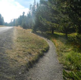 Elephant Back Trail.JPG