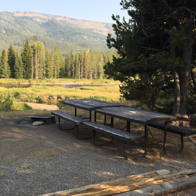 Yellowstone Snake River Picnic Area.JPG