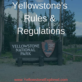 Resources Yellowstone Rules and Regulati
