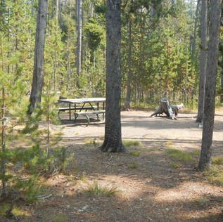 Spring Creek Picnic Area Yellowstone.JPG