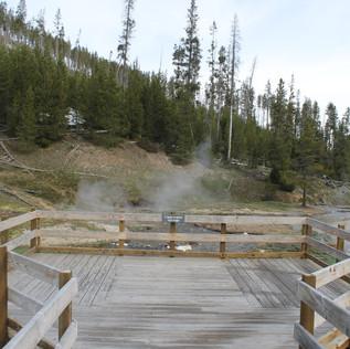 Clearwater Springs Overview.JPG