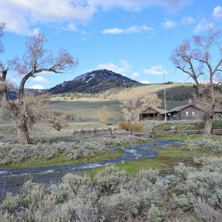 Lamar Buffalo Ranch Summer.JPG