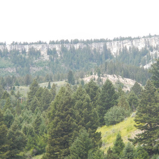 Hoodoos Terrace Mountain.JPG