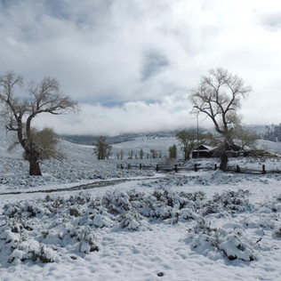 Lamar Buffalo Ranch Winter.JPG