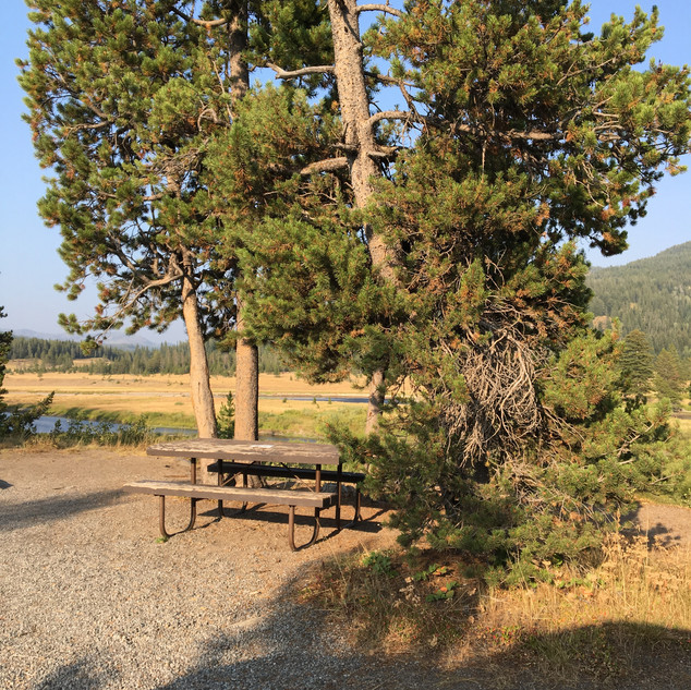 Snake River Picnic Area Yellowstone.JPG