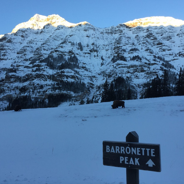 Barronette Peak View.jpg