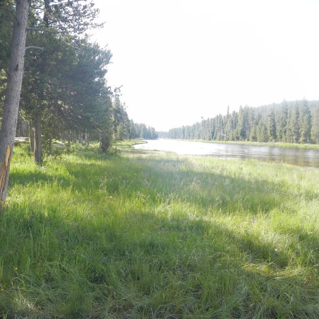 Firehole Picnic Area and Firehole River.