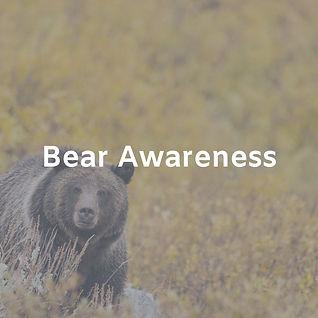 Bear Awareness.jpg