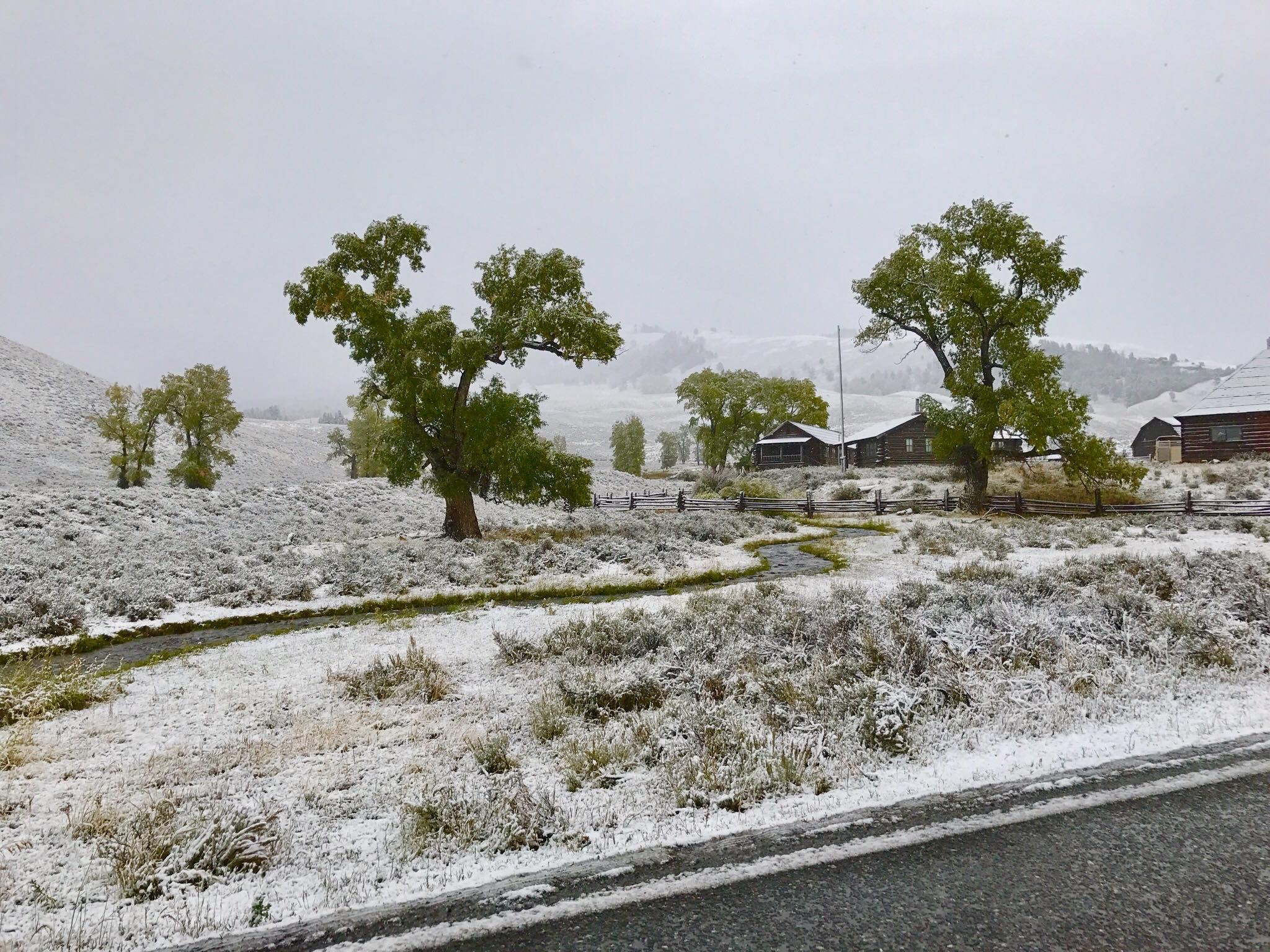 Lamar Buffalo Ranch Spring